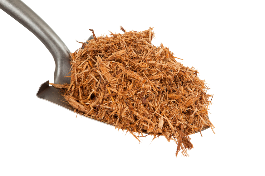 Home Maintenance Tip: Too Much Mulch Can Harm Your Foundation