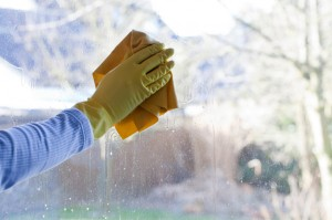 Home Maintenance Tip: Clean Your Exterior Window Glass