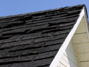 Home Maintenance Tip: Check Your Asphalt Shingles