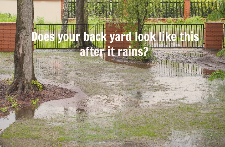Home Maintenance Tip: Solve Poor Yard Drainage Issues