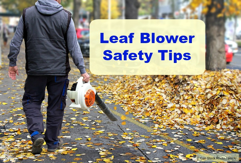 Gasoline Leaf Blower Safety Tips