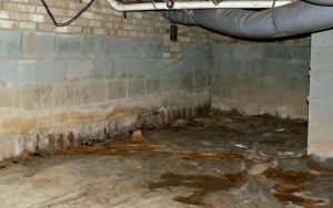 Excessive moisture in the crawl space on top of the vapor barrier