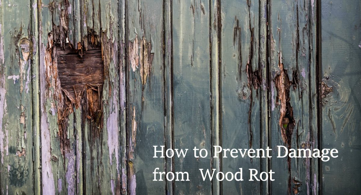 How to Prevent Damage from Wood Rot
